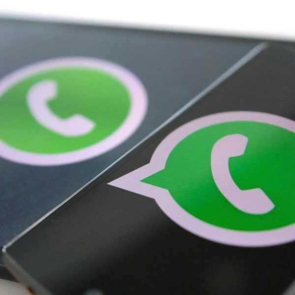 В WhatsApp добавили GIF-изображения (WhatsApp)