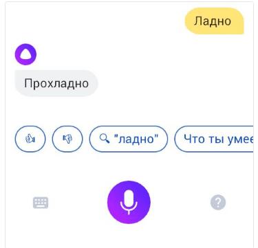 Пользователи издеваются над «Алисой» (alisa yandeks14 e1507810399189)