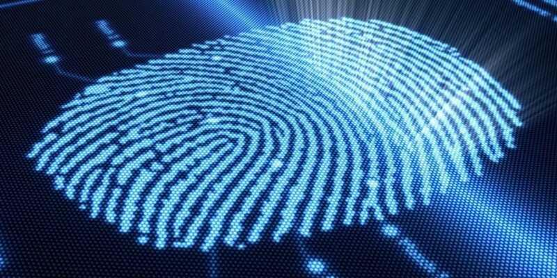 Одна из моделей Samsung получит наэкранный сканер отпечатков пальцев? (shutterstock 65440315 800.0)