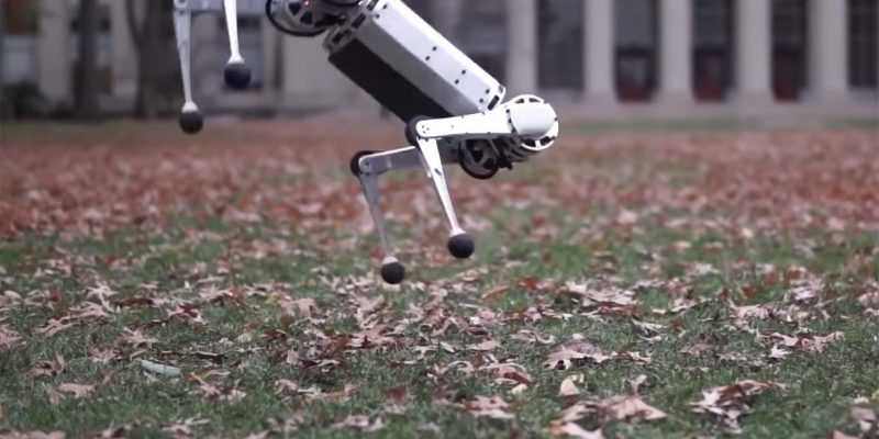 Робот MIT Mini Cheetah научился делать сальто (dims 7)