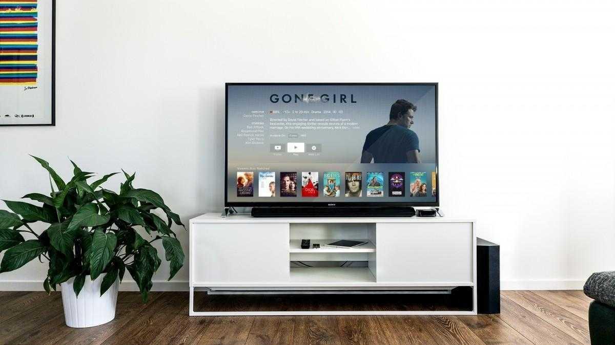 Ошибка Android TV показывает аккаунты десятков незнакомцев (tv television plant media center indoor 45791.jpgd)