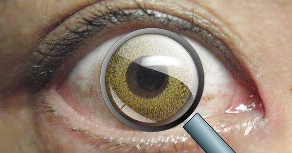Ученые создали контактную линзу, которая позволяет увеличивать изображение (zoom)
