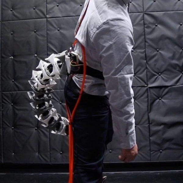 Японские изобретатели создали роботизированный хвост для людей (0 jip chp 060819tail 1253jpg)