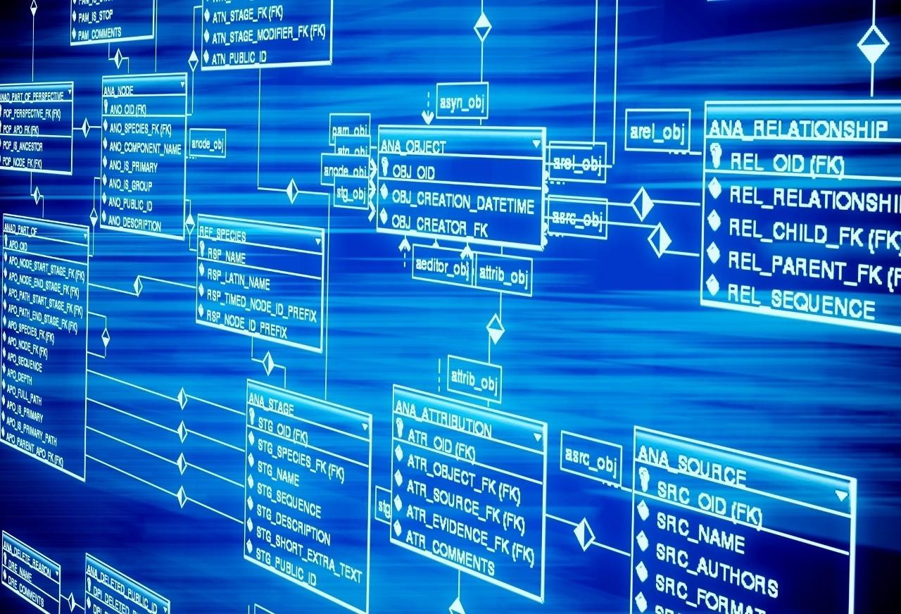 SAP запускает платформу для обработки гигантского потока информации (1 6)