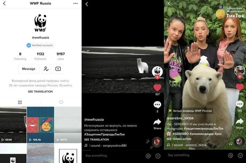 В TikTok запустили новый челлендж WWF #ЗащитникПриродыТикТок (tt)