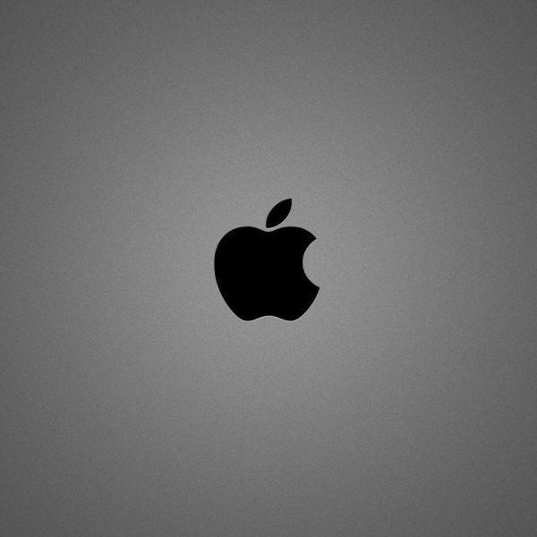 Фил Шиллер, Apple: слот для SD-карт, HDMI и USB никогда не вернутся в MacBook (apple brushed metal)