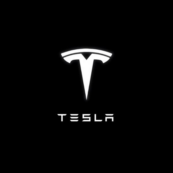 Тесла закрыла свой завод в Шанхае из-за коронавируса (baf2202fbf0c99953e808de03a66892e)