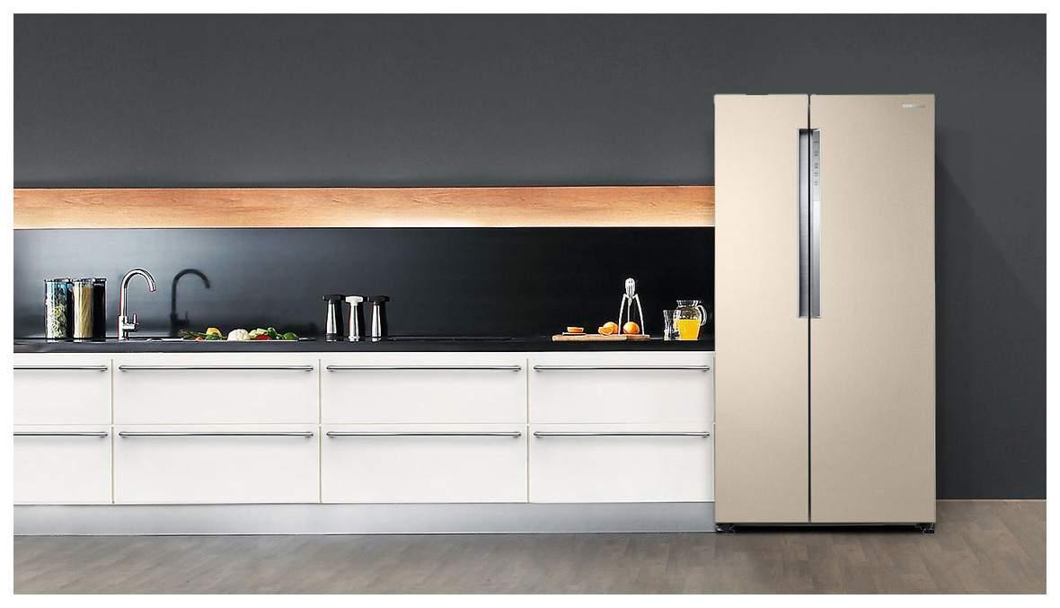 Как выбрать хороший холодильник для дома (100023478758b6)
