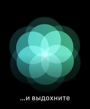 img_3009