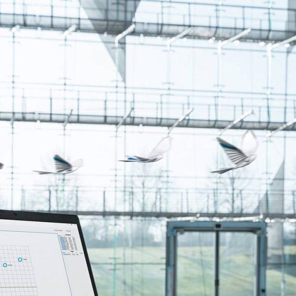 Учёные создали птицу-робота (bionicswift3 1 1280x720 1)