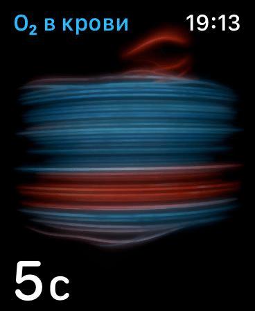 Первый взгляд: обзор Apple Watch series 6 cо сканером кислорода в крови (image 50)
