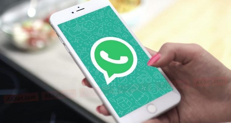 В веб-версии WhatsApp появятся видеозвонки (22)