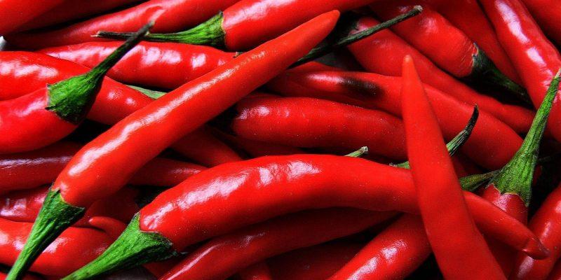 Инженеры создали гаджет для определения остроты перца (Food Differring meal Chili 030800)