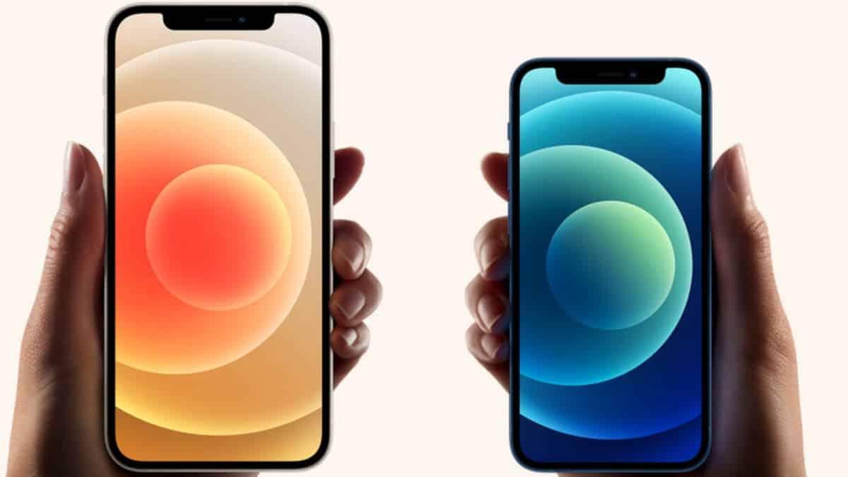 iPhone 12 mini и 12 Pro Max доступны для предварительного заказа (iPhone 12 sds)