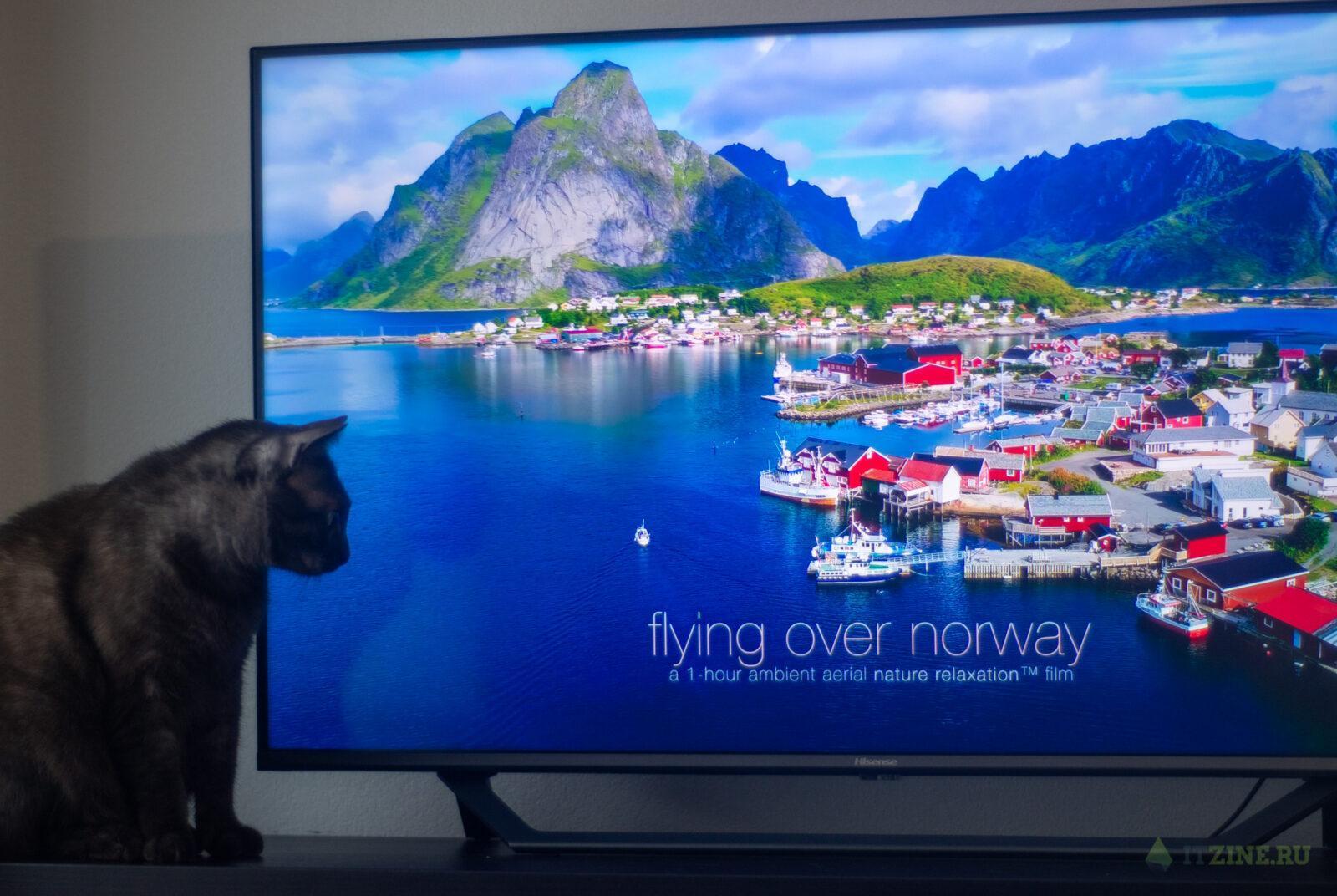 """Обзор телевизора Hisense A7500F 43"""". Выгодная покупка (Hisense TV 28)"""