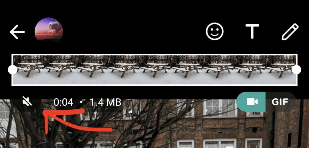 WhatsApp: теперь вы можете убрать раздражающий звук перед отправкой видео (screenshot 20210208 110515 1)