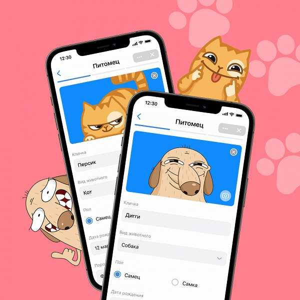 ВКонтакте появился сервис, который будет помогать заботиться о своих питомцах (vk pets 2 large)