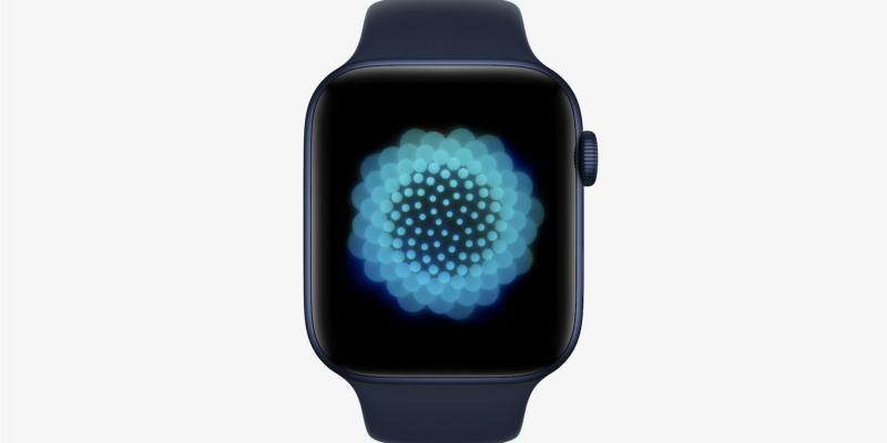 WWDC 2021: обновление watchOS 8. C часов можно даже отправить GIF (20210607180909 716753 1)