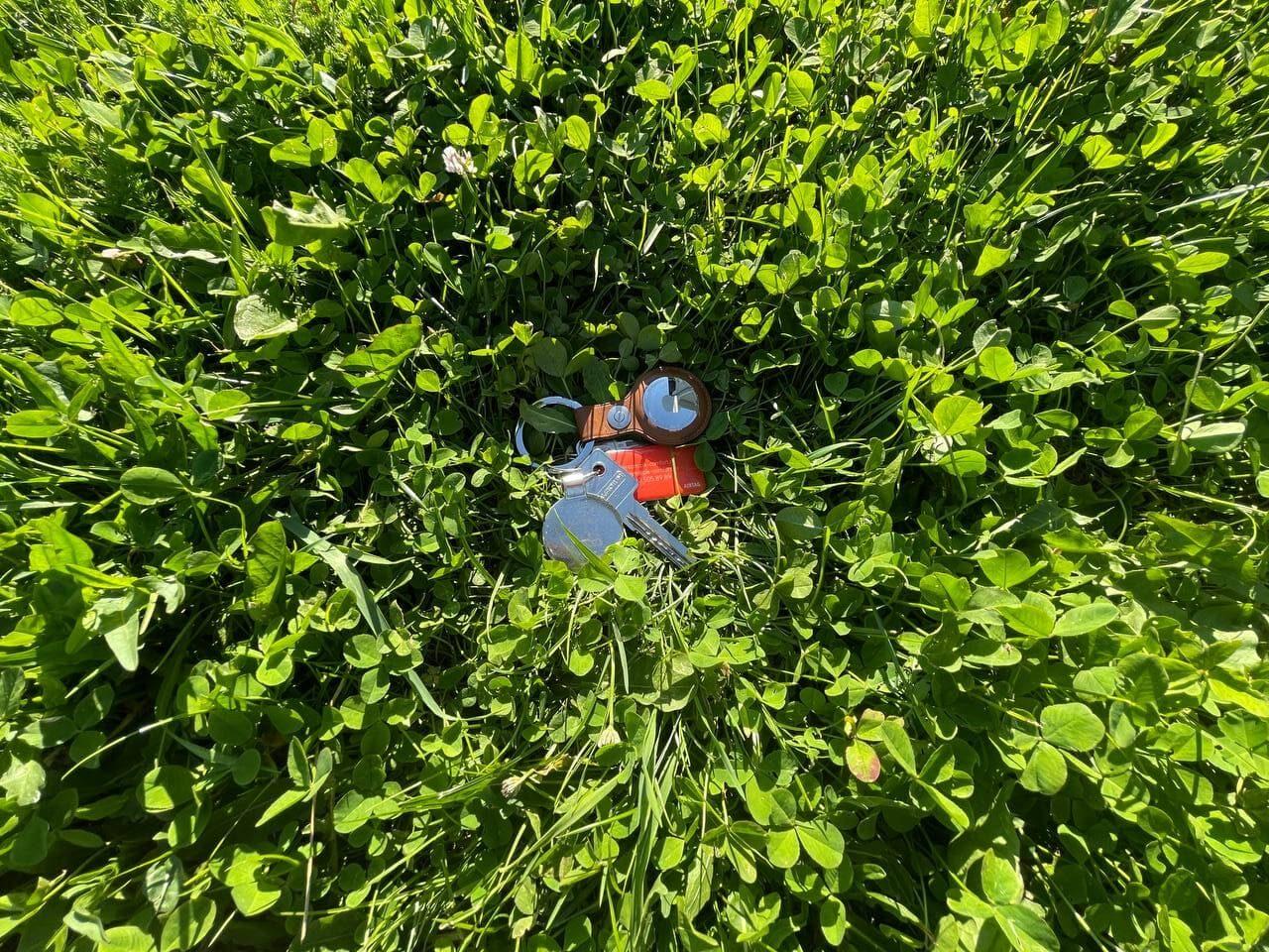 Ключи с Apple AirTag затерялись в траве