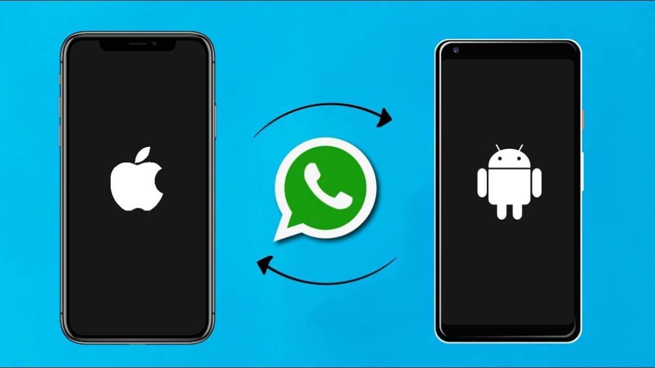 WhatsApp перестанет работать на старых версиях Android, iOS и KaiOS (whatsapp transfers)